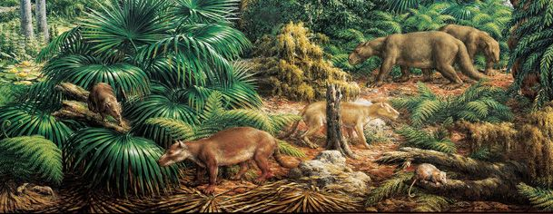 One of the first  mammals, Eozostrodon