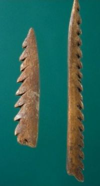 Maglemose harpoon heads