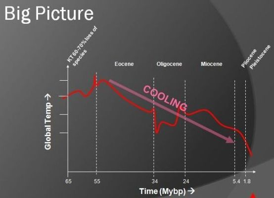 Earth's Cooling during Cenozoic