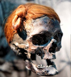 A decapitated head from the time of the Roman Empire fond in a bog at Osterby in Germany