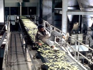 Thorn in the Soylent Green factory 2